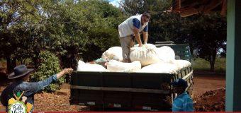 Programa cultivo de algodón en Bella Vista