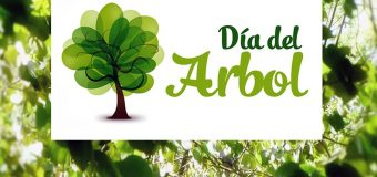 19 de junio Día del Árbol