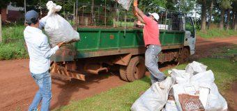 Limpieza y eliminación de posibles criaderos de mosquitos.
