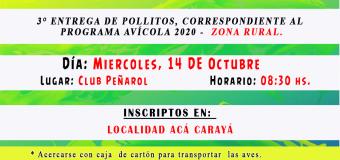 3° Entrega de Pollitos, correspondiente al Programa Avícola 2020 – ZONA RURAL.