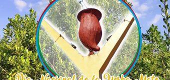 11/10/ 2021 – Día Nacional de la Yerba Mate.